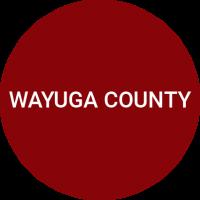Wayuga-County.png